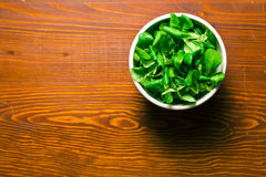 Corn salad, lamb's lettuce Royalty Free Stock Image