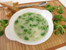Corn salad soup. And bread royalty free stock images