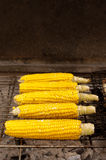 Corn with salt on BBQ Stock Photo