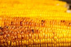 Corn with salt on BBQ Royalty Free Stock Photo