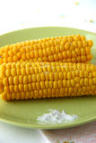 Corn. With salt on a green plate Shallow DOF stock image