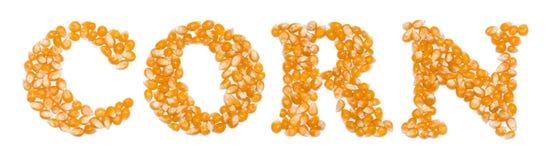 Corn script made of seeds Stock Photos