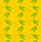 Corn seamless pattern. Maize endless background, texture. Vegetable backdrop. Vector illustration. Royalty Free Stock Images