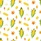 Corn seamless pattern vector illustration. Maize ear or cob. Yellow sweetcorn and seeds autumn white background Royalty Free Stock Photos