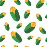 Corn seamless texture Stock Images