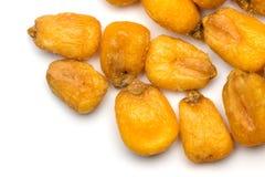 Corn seed Royalty Free Stock Image