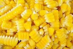 Corn seeds background Royalty Free Stock Photo