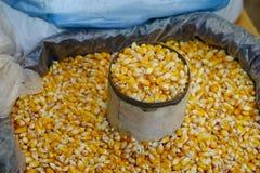 Corn seeds on bamboo basket royalty free stock photos