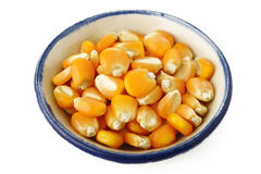 Corn seeds in bowl Royalty Free Stock Photo