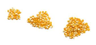 Corn seeds Stock Photo