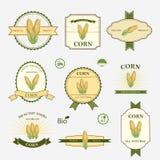 Corn, set of label design Royalty Free Stock Photos