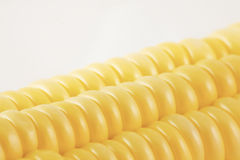Corn skin Royalty Free Stock Photo