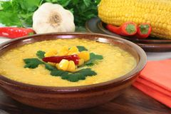 Corn soup Stock Image