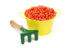 Corn sowing seed Stock Photo