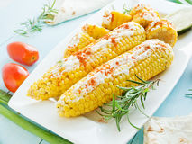 Corn with spices Stock Images