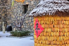 Corn stacks in the winter of northern China. A rich harvest of Chinese characters on the corn stacks,in the winter of northern China stock photography