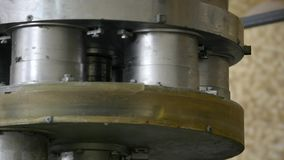 Corn sticks processing factory equipment stock footage