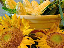 Corn and sunflowers. Bowl of corn with sunflowers Royalty Free Stock Photo
