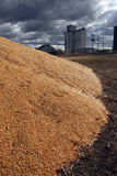 Corn Surplus and Elevator. Surplus corn pile and grain elevator in background with grey storm clouds above stock images
