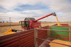 Corn tank Royalty Free Stock Images