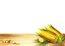 Corn template for your product. Watercolor on a white background Royalty Free Stock Photography