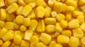 Corn texture. In the kitchen stock video