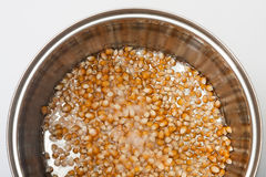 Corn topped with oil and base metals in the pot Stock Image