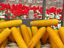 Corn and tulips in Istanbul Royalty Free Stock Photography