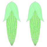 Corn vector. Two corn funny cartoon green Royalty Free Stock Photo