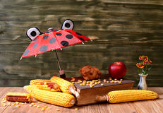 Corn, umbrella, books and figure pigs Stock Image