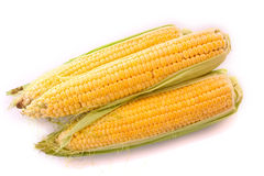 corn vegetable Royalty Free Stock Photos
