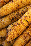 Corn Wall Stock Photos