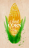 Corn watercolor poster. Poster with watercolor corn lettering sweet corn natural home grown Stock Images