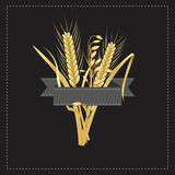 Corn and wheat logo with a gray label template. Vector logo or decoration for corn and wheat related products or for company and business Royalty Free Stock Image