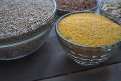 Corn wheat oat buckwheat porridge Royalty Free Stock Photo