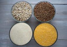 Corn wheat oat buckwheat porridge Royalty Free Stock Images