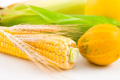 Corn, wheat and pumpkin Stock Photography
