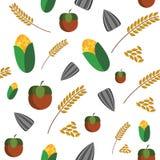 Corn Wheat Seed Nut seamless texture Stock Image