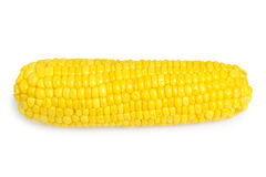 Corn  on white Royalty Free Stock Images