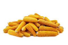 Corn on white background. Yellow Corn on white background Royalty Free Stock Image