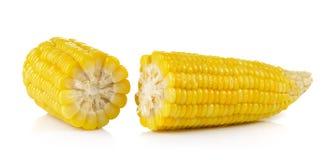 Corn on white background Royalty Free Stock Photo