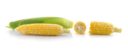Corn on a white background Stock Photos
