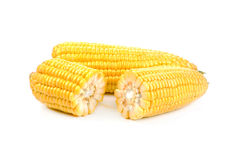 Corn on a white background. Corn isolated on a white background Royalty Free Stock Images