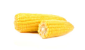 Corn  on a white background. Corn isolated on a white background Royalty Free Stock Photo