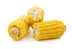 Corn on white background Royalty Free Stock Photos