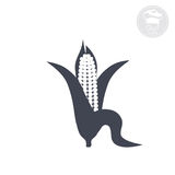 Corn. On a white background shows an icon indicating the corn Royalty Free Stock Photography