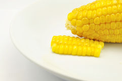 Corn on white plate. Show food blackground Royalty Free Stock Images