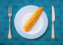 Corn on white plate Royalty Free Stock Image