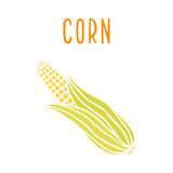 Corn  on white Stock Photography