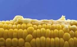 Corn With Mayonnaise Royalty Free Stock Images